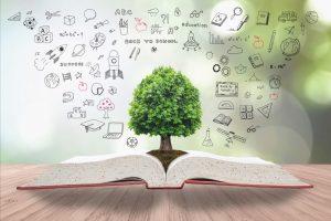 libro per master in consulenza ambientale